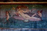 Vénus a la conche