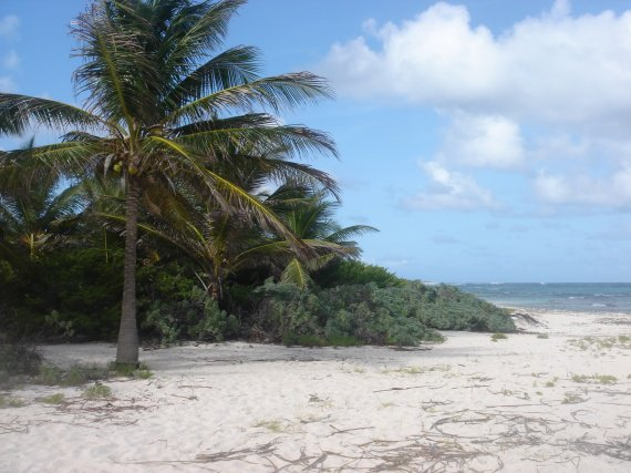voyage-guadeloupe-plage-petite-terre-img.jpg
