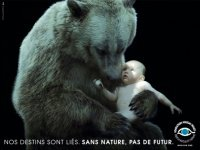 mid_Un_Ours_Prot_geant_Un_B_b__Humain