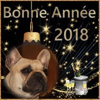 Bonne année 2018 Margot