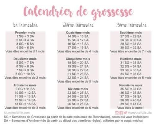 Calendrier Gestationnel.Comment Compter Les Mois De Grossesse Grossesse Forum