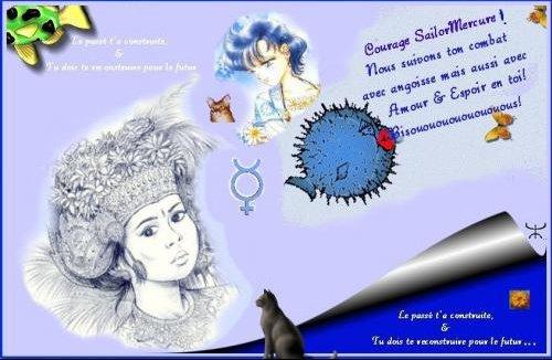 Pour SailorMercure3