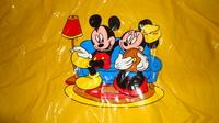 DSC00165 cape plastique jaune mickey-minnie