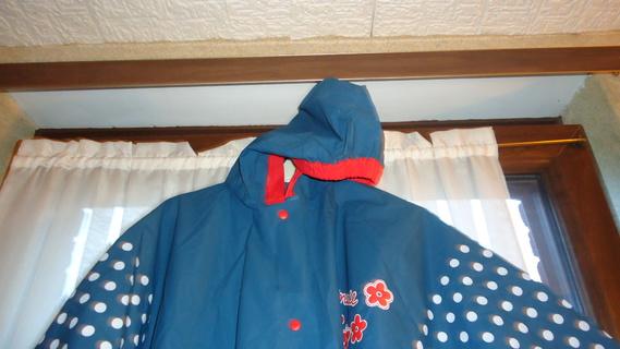 DSC00472 cape bleu minnie