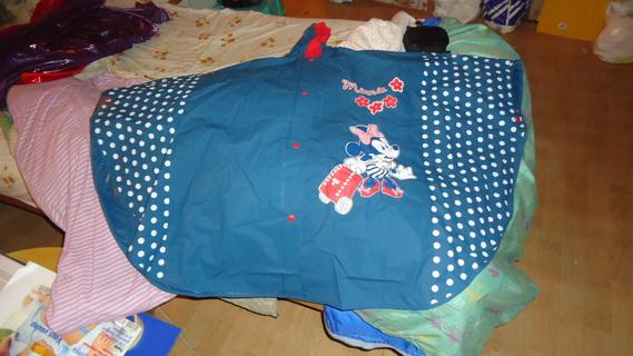 DSC00475 cape bleu minnie