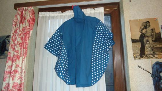 DSC00477 cape bleu minnie