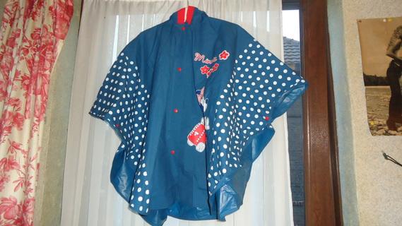 DSC00473 cape bleu minnie