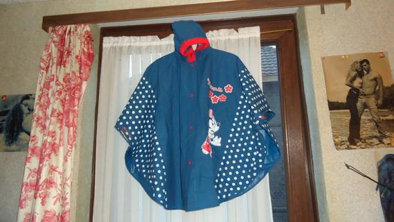 DSC00471 cape bleu minnie