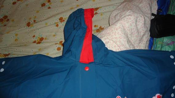 DSC00476 cape bleu minnie