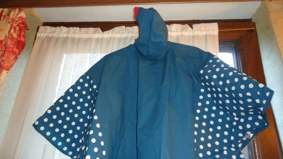 DSC00478 cape bleu minnie