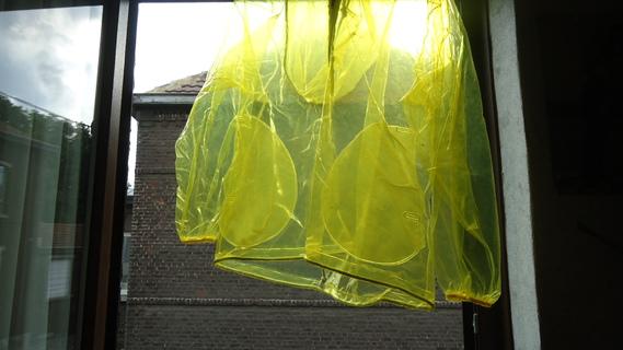 DSC00887 imper jaune translucide