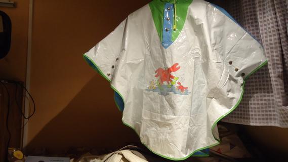 DSC06472 cape plastique crabe