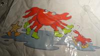 DSC06485 cape plastique crabe