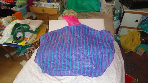 DSC09696 cape mauve lignée