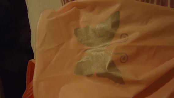 DSC02142 cape plastique papillon