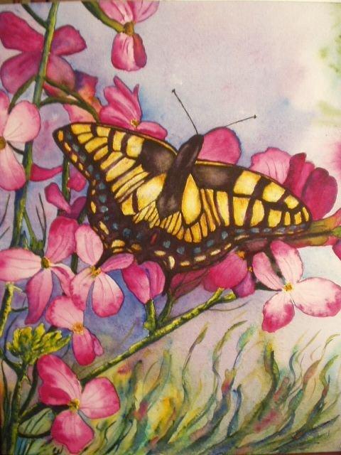 petits-gifs-papillons-57-img