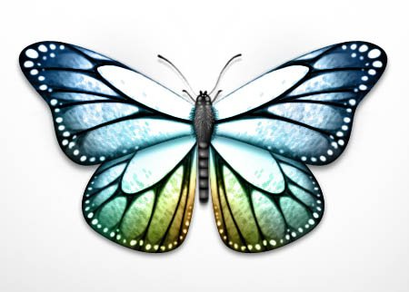 petits-gifs-papillons-60-img