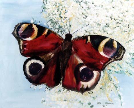 petits-gifs-papillons-63-img