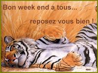 bonweekend (2)