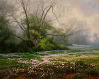 Mark Haworth, Primrose Path