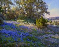 Mark Haworth, Springtime