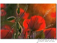 Tableau_moderne_Coquelicots_-_fleurs_pleines_de_sensualite