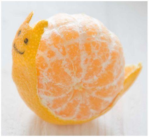 mandarine-escargot