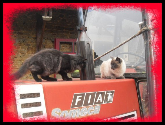 En tracteur!!