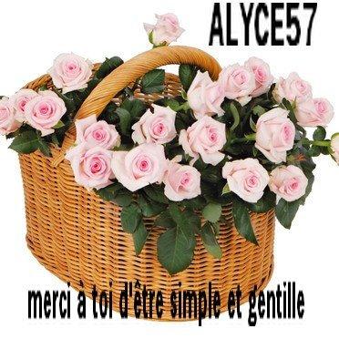 plante-et-bouquet-123-fleurs-2506542_1350