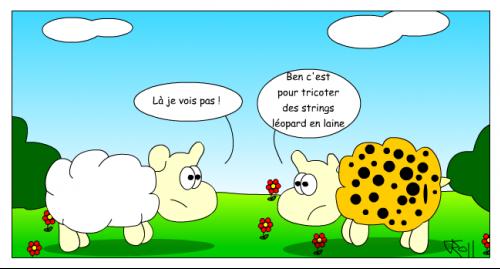 new_mouton29
