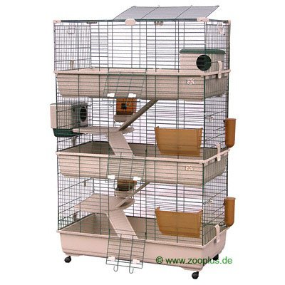 grande cage cochon d 39 inde hamsters cochons d 39 inde lapins forum animaux. Black Bedroom Furniture Sets. Home Design Ideas