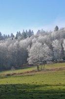 Paysage hivernal des Monts de Blond