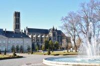 Cathédrale Saint-Etienne.