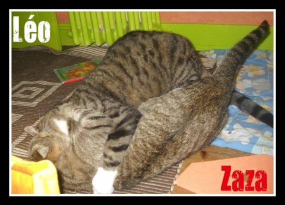 Léo-Zaza