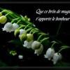 muguet-porte-bonheur-0600