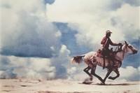Sans titre (cowboy)1989 Richard Prince