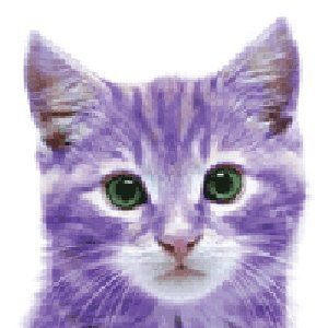 purple%20cat
