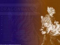 DragonBall05