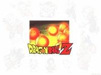 DragonBall14