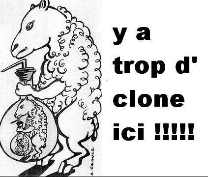 clonage9qr526223