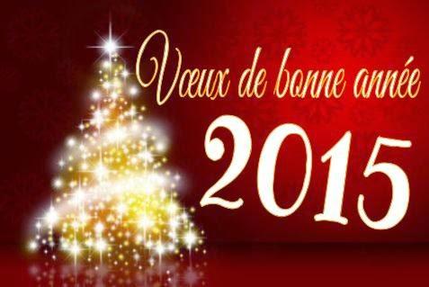 voeux-bonne-année-2015