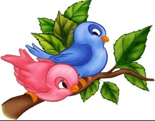 petits-oiseaux-2-667173638f
