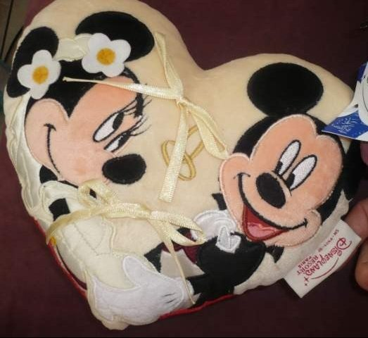 coussin-alliance-disney
