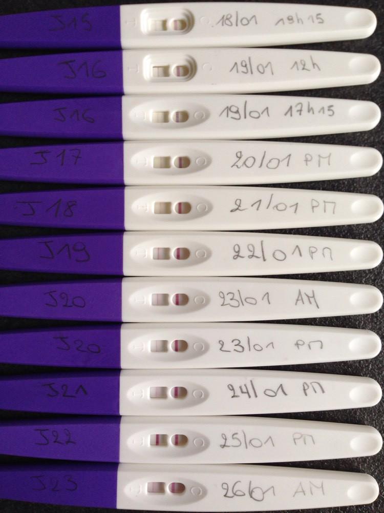 Test d ovu lifecare avis tests et sympt mes de - Enceinte avant retour de couche symptomes ...