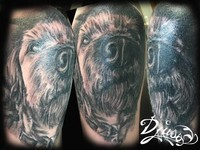 Du chien plein l'épaule, au fil du nez. Tatouage Calypso - Québec Tattoo Shop