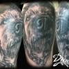 photo-image-tatouage-chien-realiste-bras-femme-museau