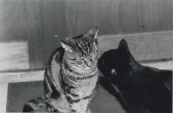 Kronos et Titoune
