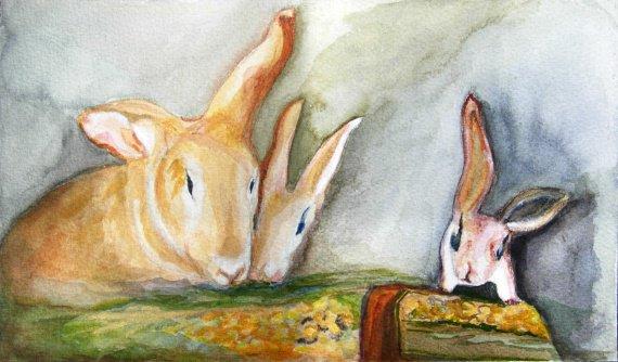 lapins traités