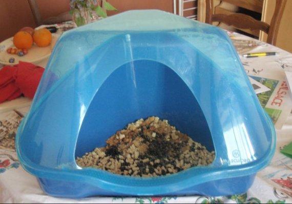 nouvelle liti re mais lapin toujours cracra hamsters. Black Bedroom Furniture Sets. Home Design Ideas