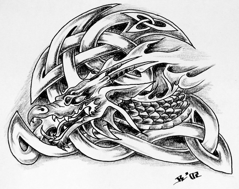 tattoo tribal tribal dragon tattoo by photos8 desktop wallpapers and